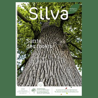 Silva Belgica