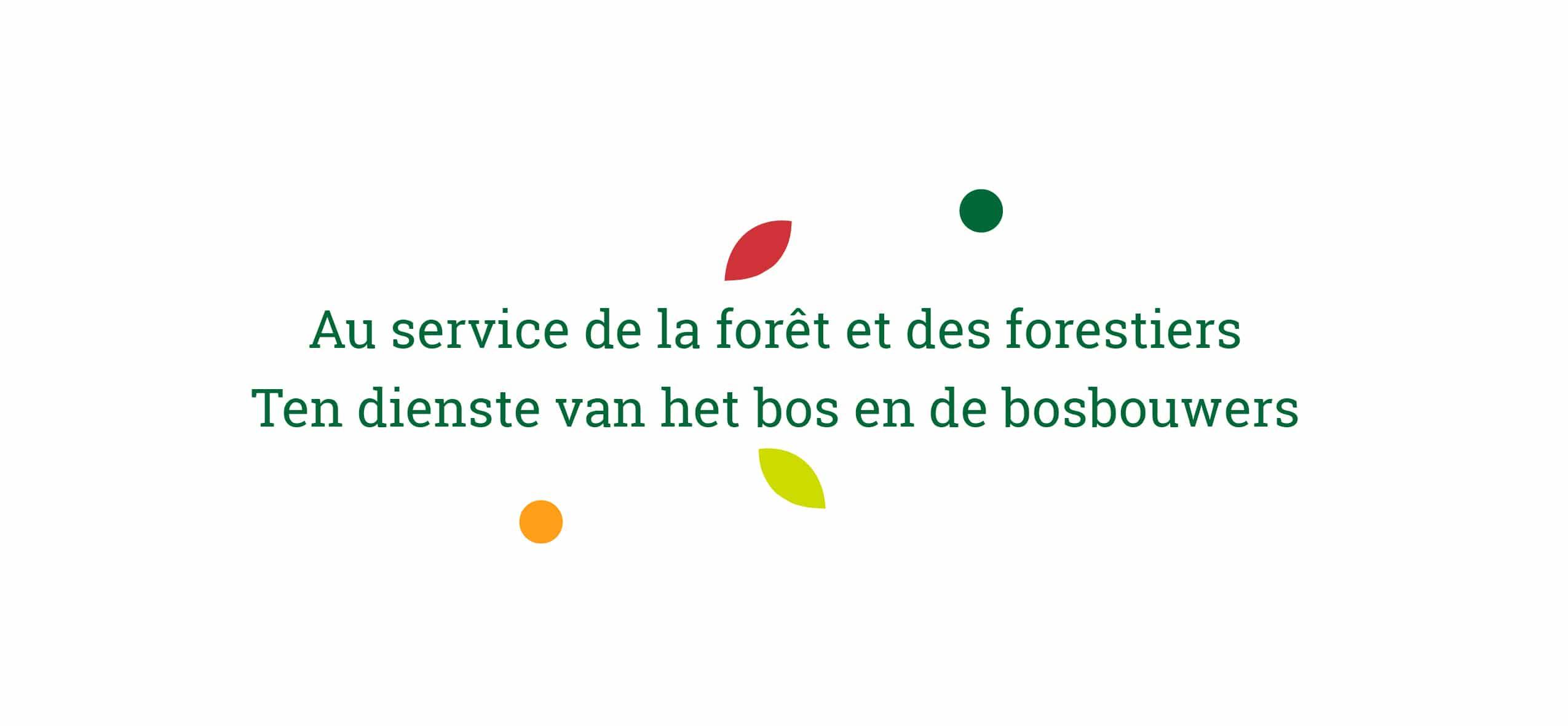 Devise de la SRFB-KBBM - Au service de la forêt et des forestiers - Ten dienst van het bos en de bosbouwers