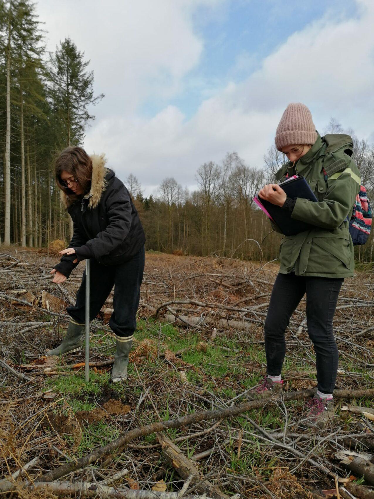 Victoria B et Victoria R, stagiaires à la SRFB en train de prospecter une parcelle pour les Arboretums